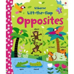 Usborne - Lift the flap opposites